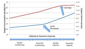 Oxygen Consumption Chart Gboson Maximal Oxygen Uptake Lactic Threshold