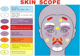 Details About Portable Beauty Facial Analyzer Skin Scanner Skin Scope Care Diagnosis Machine