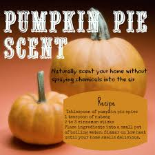 Scent your home with the smell of Pumpkin Pie without polluting your home's  air quality with