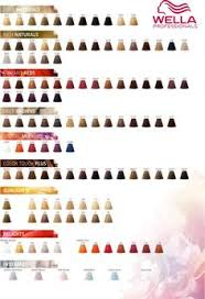 Wella Colour Touch Chart 8 Best Wella Hair Color Images Hair Color Hair Hair