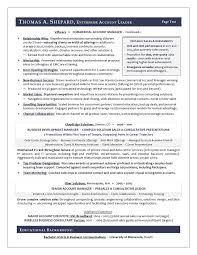 executive resume writer best executive resume writer award winning sales sample