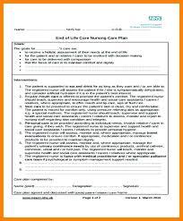 Care Plan Forms Template Care Plan Example Blank Nursing 4 5