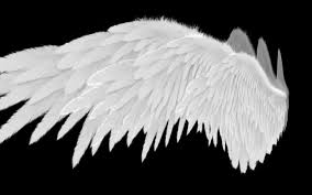 angel wings type 2 level 3 3d model low poly rigged animated max obj
