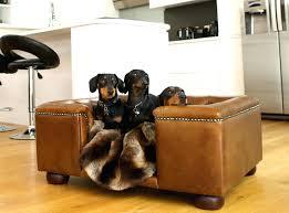 designer dog bed furniture. Exellent Bed Stylish Dog Beds Style Fix A Rack Bed   Designer For Sale Lodge Furniture  On Designer Dog Bed Furniture
