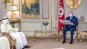 رئيس تونس يستقبل مستشار رئيس الإمارات.. وقرقاش: نتفهم قرارات قيس سعيد  التاريخية - CNN Arabic