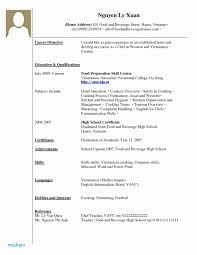 Resume Examples With No Work Experience 3886 Densatilorg
