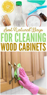 Cleaning Wood Kitchen Cabinets 25 Best Ideas About Cleaning Wood Cabinets On Pinterest Wood