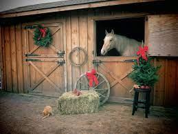 41+] Christmas Horse Wallpaper Free on ...
