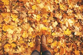 Image result for autumn leaves boots