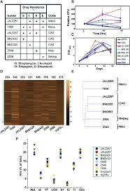 Diverse Field Isolates Of Mycobacterium Tuberculosis Exhibit