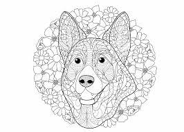 Kleurplaat hond 64 gratis allerleukste honden kleurplaten. Puppy Schattige Dieren Kleurplaten Moeilijk Coloring And Drawing