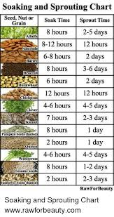 Soak And Sprout Chart Soaking And Sprouting Chart Seed Nut Or Soak Time Sprout