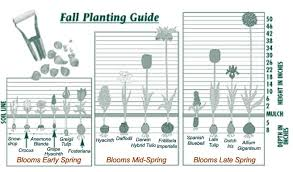 Small Picture Garden Design Garden Design with Planting Spring Bulbs Keeping