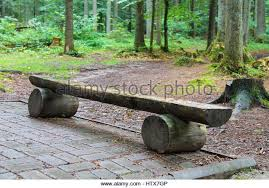 furniture made from tree trunks. beautiful tree wooden bench made of tree trunks in city park  stock image and furniture made from tree trunks