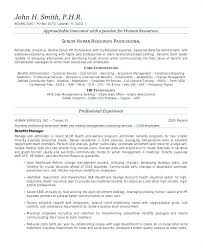 Professional Summary Samples On Resume Best of Resume Summary Samples Best Resume Formats Free Samples Examples