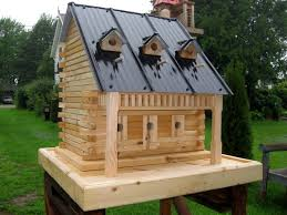 back to making small bird house plans