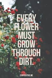 40 Best Words Images On Pinterest Book Lists Playlists And New Wonderful Quotes Usi Comg Flowers