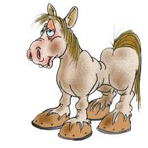 Image result for nag horse