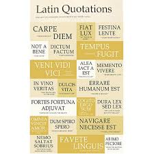 Latin Quotes Custom Unique Latin Quotes About Family 48 Best Latin Images On Pinterest