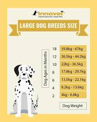 Puppy Growth Chart By Month Breed Size With Faq All You