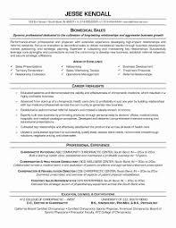Combination Resume Samples Sample Hybrid Best Of 15 Functional