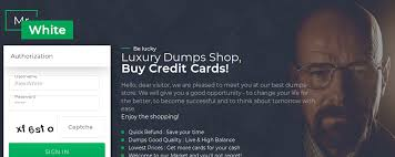 lately there s been a large increase in numbers of sites offering credit card dumps at so called reasonable s so that people could improve security