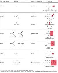 For Each Of The Functional Groups Complete The Chart Gallants Biology Stuff