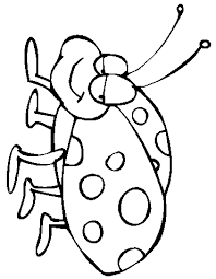 Small Picture ladybug coloring pages free printables ladybird on a leaf free