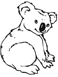 cute koala coloring page