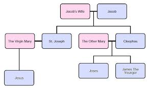 Did Mary Have Other Children Shameless Popery