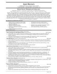 Project Consultant Sample Resume Mitocadorcoreano Com
