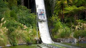 Image result for rainbow springs