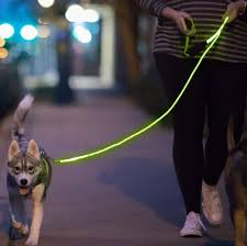 Led Lights For Dog Walking Led Glow In The Dark Pet Dog Leash Dogs Pet Dogs Dog Walking