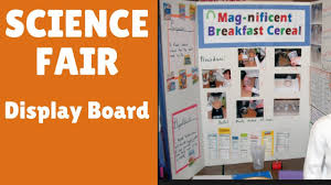 Science Fair Chart Template Setting Up Your Show Board For Science Fair