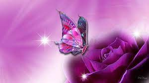 49+] Butterfly Wallpapers for Laptop on ...