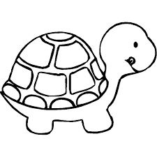 Animal Coloring Sheets Pics Of Animals Animals Coloring Turtle