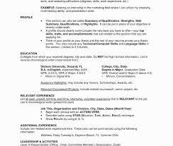 Functional Resume Definition Medmoryapp Com