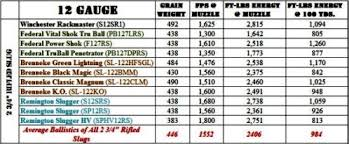 20 Experienced Rifled Slug Ballistics Chart
