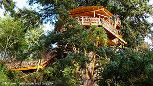 luxurious tree house. Luxurious Tree House