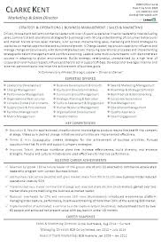 Retail Sales Executive Resume Retail Sales Manager Resume Summary Director National 8 Letsdeliver Co