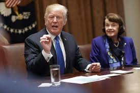 president donald trump speaks during a bipartisan round table discussion on control at the