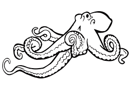 Small Picture Octopus Coloring Page Clipart Panda Free Clipart Images