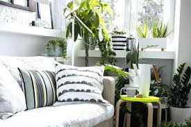 corner furniture for living room. Perfect For Living Room Corner Furniture Ideas  Filled With Houseplants Intended Corner Furniture For Living Room