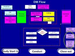 Clinical Data Management Flow Chart Statistical Analysis Plan And Clinical Study Report Ppt