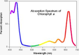 Analytical Chemistry Uv Visible Spectroscopy