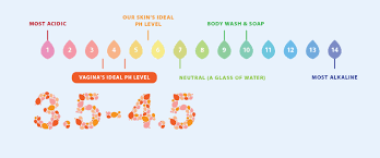Understanding Your Vaginal pH Levels