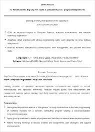 Programmer Resume Template – Saleonline.info