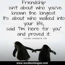 Quotes About Unexpected Friendship
