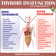 Pin By Stepin2 On Disease Fighting Charts Thyroid