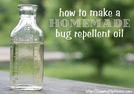homemade bug repellent oil natural flee